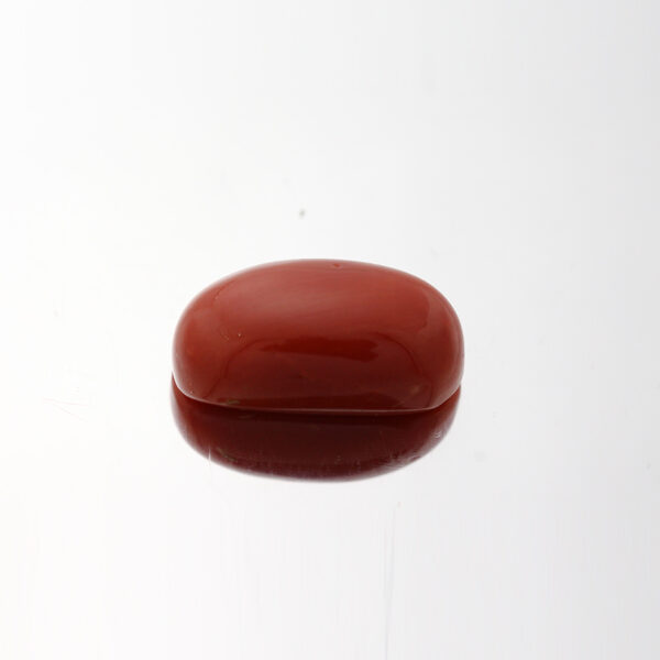 Red Coral - 7.1ct