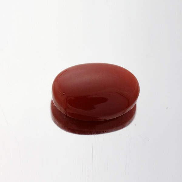 Red Coral - 9.1ct